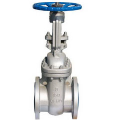 Stainless Gate Valve 10K Flanged